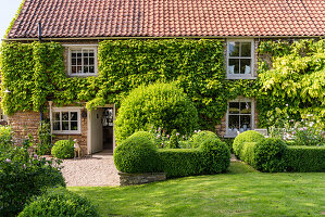 Thoughtful planting has transformed the garden of this charming family home.