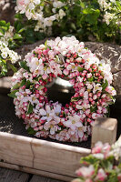 Wreath of apple blossom branches