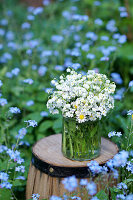 Bouquet of lily-of-the-valley, white forget-me-nots and daisies