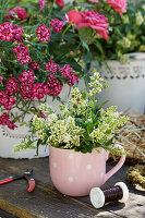 Kleiner Strauß aus Ligusterblüten in Tasse neben Topf mit Nelken
