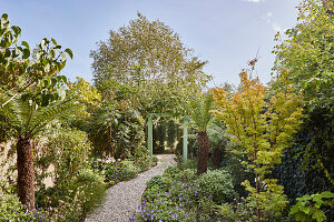 Gravel path in lush garden
