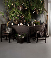 Crockery and candle lanterns on brown tablecloth under branches decorated for Christmas