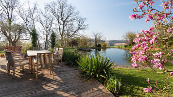 Seating on wooden terrace, flowering magnolia tree and palm lilies in front of swimming pond