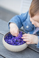 A girl reaching into a bowl of violet flowers