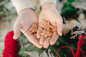 Hand holding small gingerbread cookies
