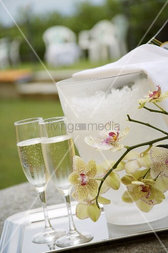 Two glasses of Prosecco with wine cooler, orchids out of doors