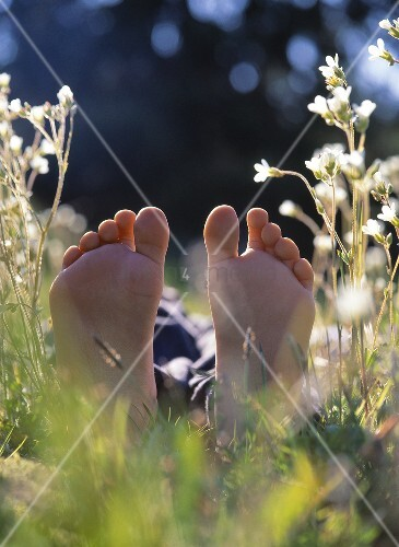 A child's feet in a field of flowers