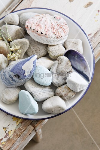 Plate of various pebbles and shells on old wooden bench with peeling paint