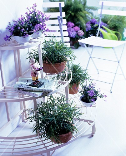 Semi-circular plant stand with plant pots and folding chairs
