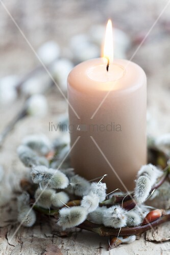 Wreath of pussy willow catkins around candle