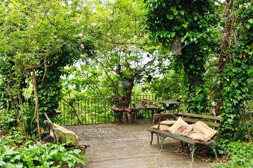 Vintage garden bench with cushions on wooden terrace surrounded by dense vegetation