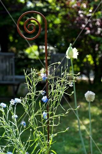 A decorative metal rod as a garden ornament