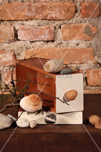 Stones and various snail shells on stacked boxes in front of rustic brick wall