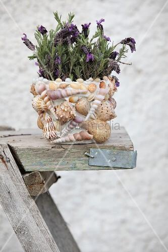 bl hende lila pflanze im blumentopf mit bild kaufen 11214997 living4media. Black Bedroom Furniture Sets. Home Design Ideas