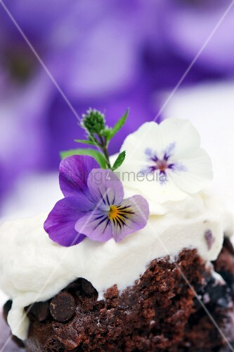 Chocolate and blueberry muffin topped with cream and violas