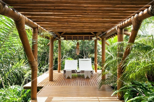 Roofed relaxation area surrounded by palm trees