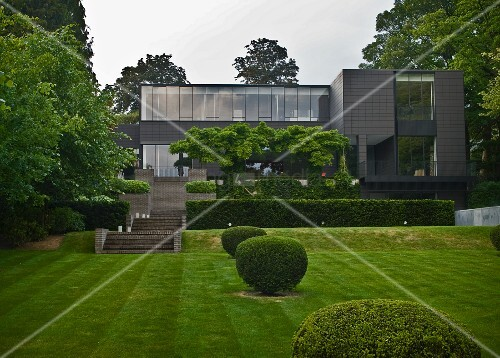 Box balls in garden with terraces and steps leading to Bauhaus-style house