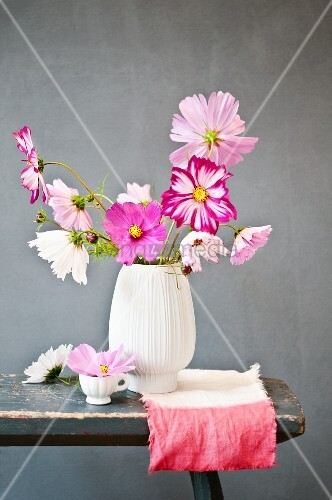 Bisque vase of cosmos on dip-dyed cloth against grey background
