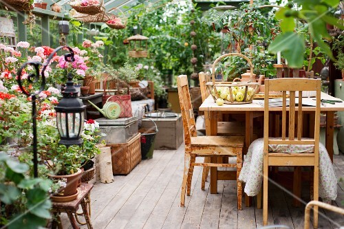 Wooden table and chairs in greenhouse with many planters on floor and stools