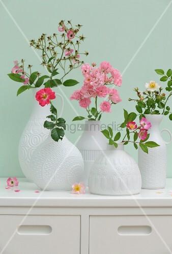 Verschiedene Wildrosensorten in weißen Porzellanvasen