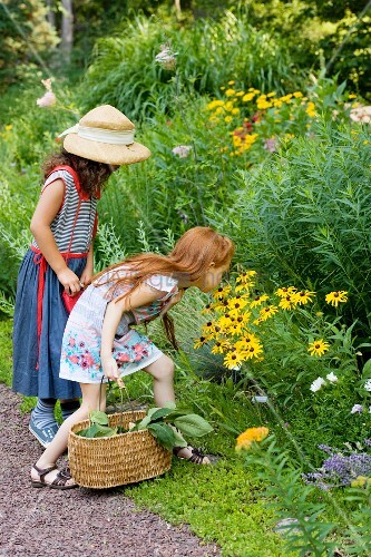 Two girls looking at wildflowers