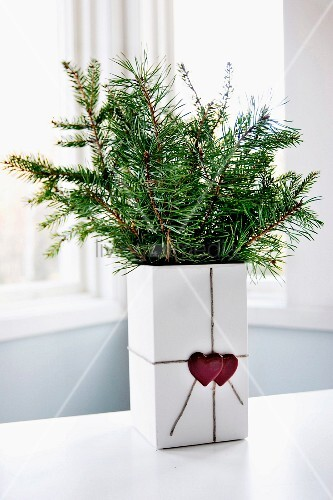 Fir branches in cubic vase with love-hearts on gift ribbon decoration