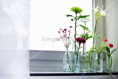 Single flowers in various glass bottles on windowsill