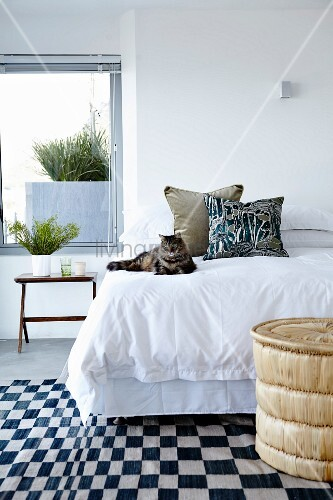 Cat on bed with white bed linen and black and white chequered rug in bedroom