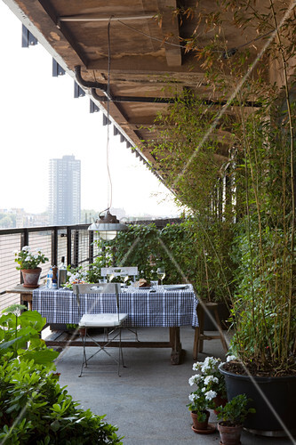 Table with black and white checked table cloth and potted plants on veranda with view of city