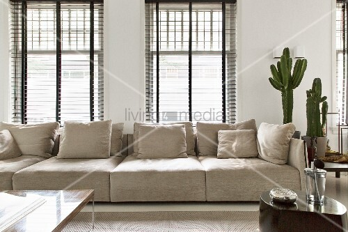 Modern couch with ecru cover and matching scatter cushions in front of half-closed louvre blinds with large cacti to one side