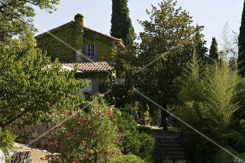 Berankte Giebelseite eines umgenutzten, historischen Gebäudes mit Natursteinmauer, alten Bäumen und Oleander im umgebenden Garten