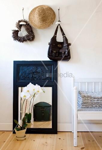 weiße Orchidee im Topf vor Spiegel auf Dielenboden, darüber Garderobe mit aufgehängter Tasche und Hut an Wandhaken, seitlich teilweise sichtbare Sitzbank