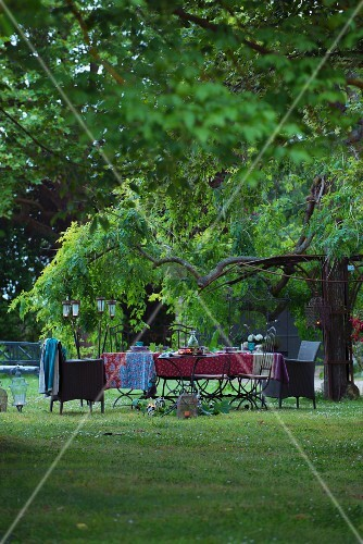 Set table below chestnut tree in garden