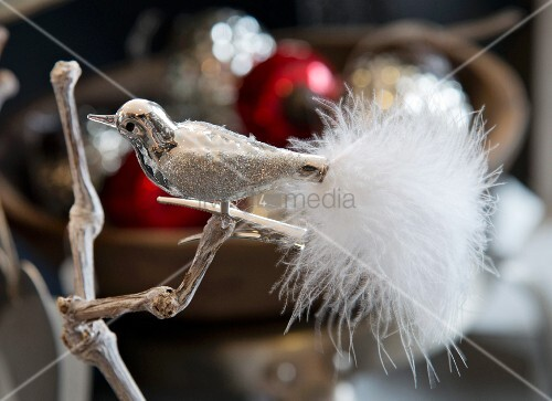 Ornamental metal bird with tail made from white feathers clipped to branch