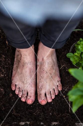 Frau steht mit nackten Füssen zwischen Pflanzen auf erdbedecktem Boden