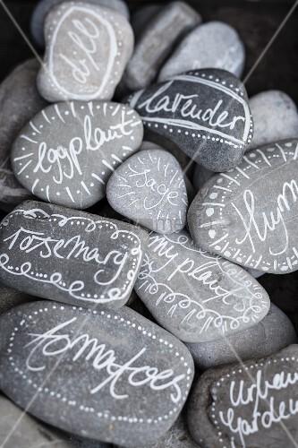 Handbemalte und mit Pflanzennamen beschriftete Steine