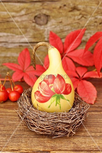 Autumnal still-life arrangement with painted squash in nest