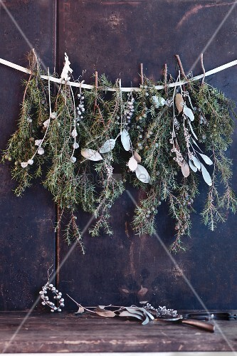 A Christmas garland made from sprigs of pine and silver-coloured leaves