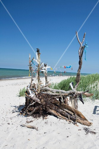 Driftwood sculpture on Prerow beach (Baltic sea, Germany)