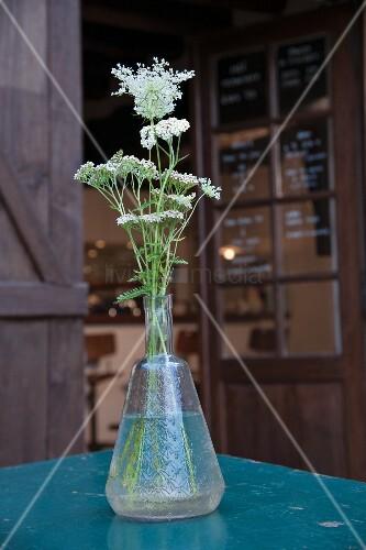 White wildflowers in vintage glass vase