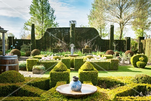 Various shapes of clipped hedges in landscaped garden