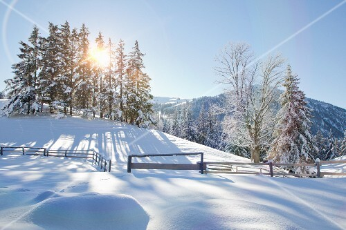 Peaceful snowy landscape with view of mountains