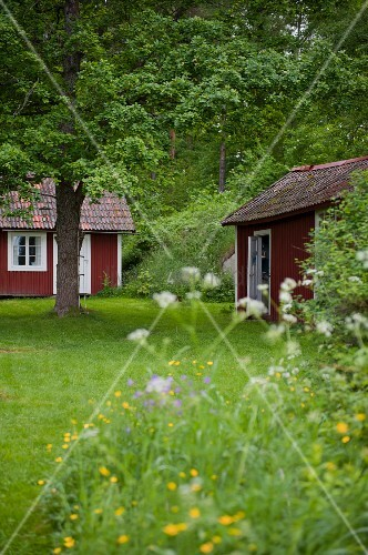 View across meadow to traditional Swedish holiday cottages