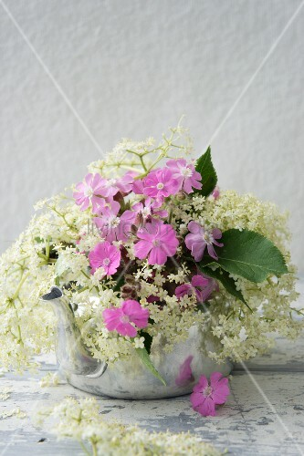 Elderflowers and campion in aluminium kettle