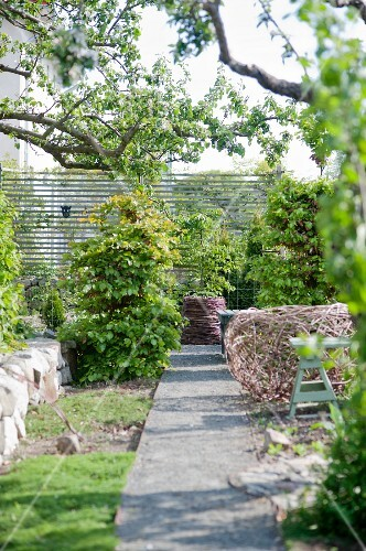 Garden path leading between shrubs and wicker ornaments