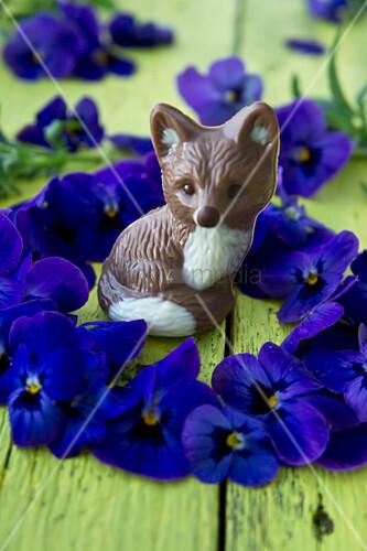 Kranz aus Hornveilchenblüten um Schokoladenfuchs
