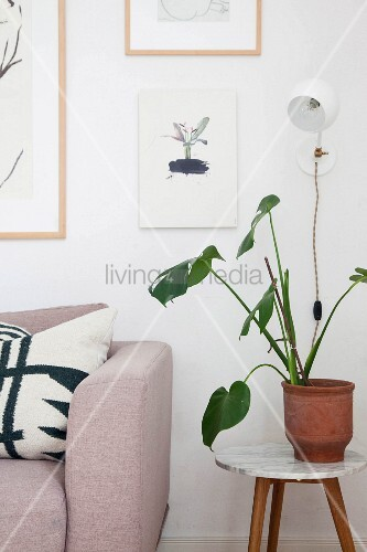 Astonishing Plant On Round Side Table Next To Sofa Buy Image Uwap Interior Chair Design Uwaporg