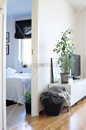 Blankets in black firewood basket next to house plant in living room and view into bedroom
