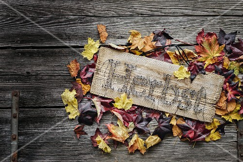 String-art sign with autumn motto surrounded by colourful leaves