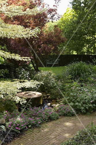 Water feature amongst densely planted shrubs and trees lining path and garden bench in background